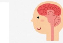 脳のメカニズム_トップ