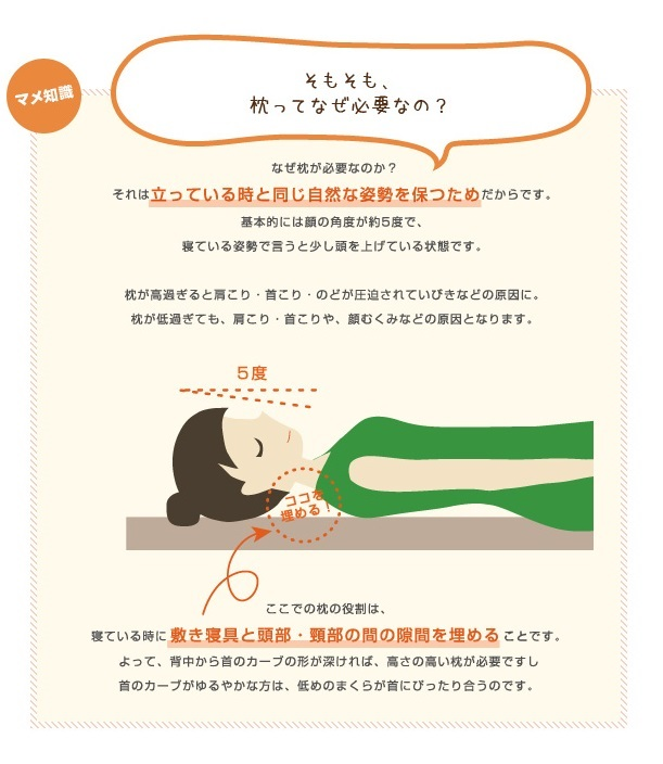 枕の豆知識